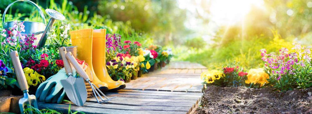 sadzonmki kwiatow ze sprzetem do sadzenia w ogrodzie